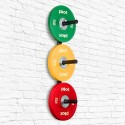 Wall Mounted Olympic Weight Rack