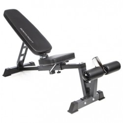 BODYCRAFT F320 FID DUMBBELL BENCH